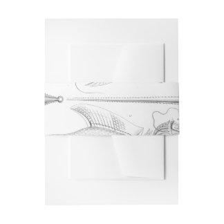 Cintas Para Invitaciones Gusanos de Ernst Haeckel Peridinea