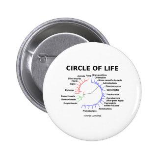 Círculo de la vida (árbol filogenético circular) pin