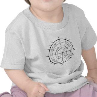Círculo de unidad del friki de la matemáticas camiseta