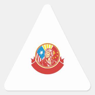 Círculo experimental de la bandera de los E.E.U.U. Pegatina Triangular