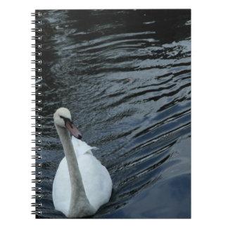 Cisne blanco cuaderno