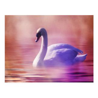 Cisne blanco que flota en un lago brumoso postal