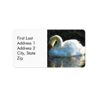 Cisne Etiquetas De Dirección