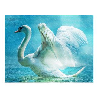 Cisne mágico durante una ducha del verano postal