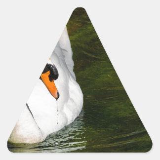 Cisne mudo pegatina triangular