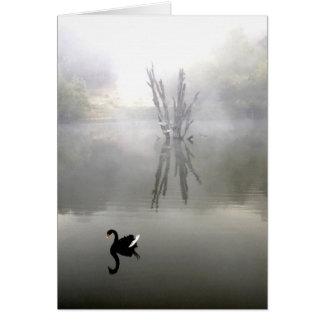"""""""Cisne negro con la pluma blanca """" Tarjeta De Felicitación"""