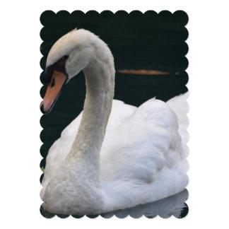 Cisne perfecto invitación 12,7 x 17,8 cm