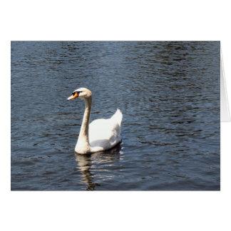cisne tarjeta de felicitación