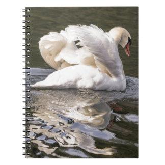 Cisne tímido cuaderno