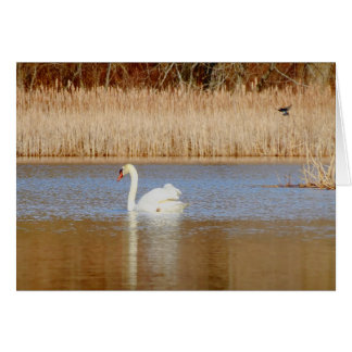 Cisne y trago tarjeta de felicitación