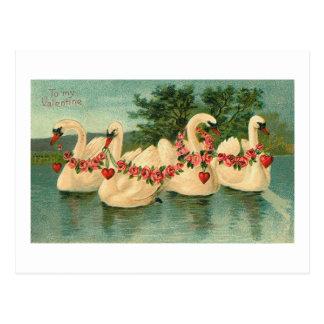 Cisnes de la tarjeta del día de San Valentín del Postal