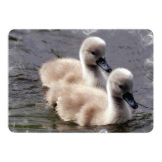 Cisnes del bebé invitación 12,7 x 17,8 cm