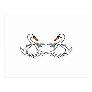 Cisnes Postal