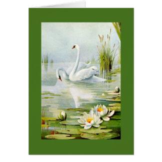 Cisnes preciosos del vintage tarjeta de felicitación
