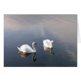 cisnes tarjeta de felicitación