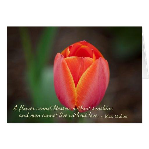 Cita anaranjada romántica del amor de la floración tarjeta