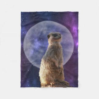 Claro de luna de Meerkat, pequeña manta del paño