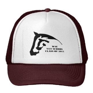 Clase del gorra 2011