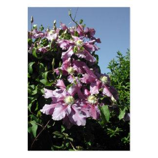 Clematis. Flores rosadas, y cielo azul Tarjetas De Visita Grandes