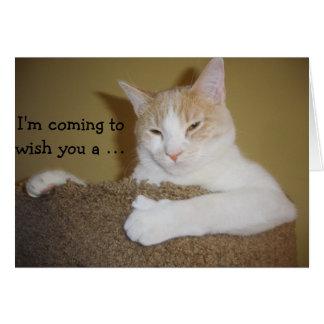 Climbing Cat: Funny Birthday Card Tarjeta De Felicitación
