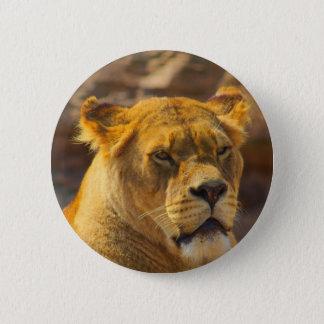 Close_Up_Tiger.jpg Chapa Redonda De 5 Cm