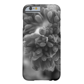 CloseCactus Funda Barely There iPhone 6