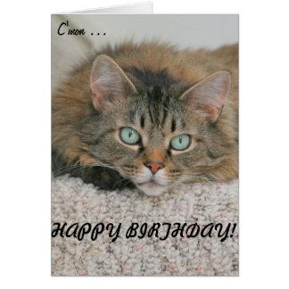 C'mon - cat&card del feliz cumpleaños tarjeta de felicitación