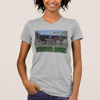 Cochecillo ejercido de chulo de Amish Camisetas