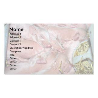 Cochinillos recién nacidos tarjetas de visita