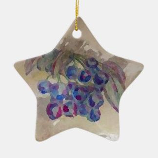 Cocina soleada de los arándanos de la mañana que adorno navideño de cerámica en forma de estrella