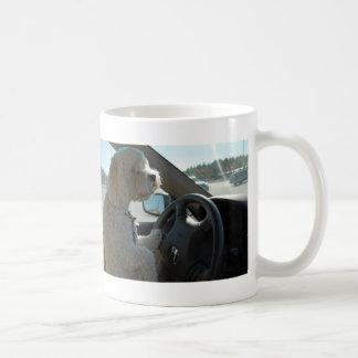 Cockapoo en la rueda taza de café