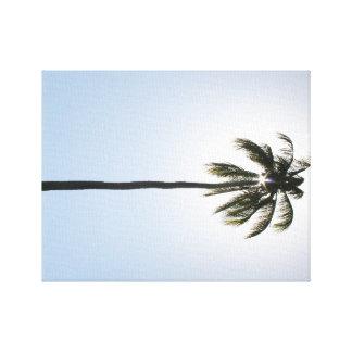 Coco del Caribe Sun y lona del profesional del Lienzo