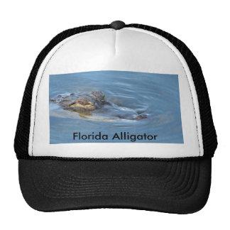 Cocodrilo de la Florida Gorra