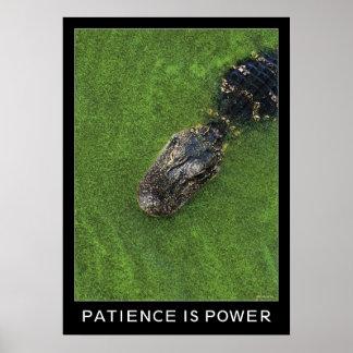 Cocodrilo • La paciencia es poder • inspiración Póster