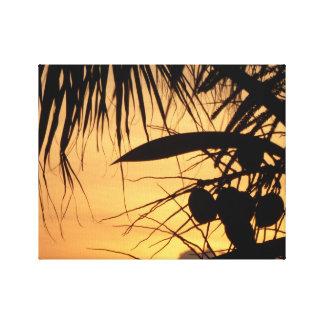 Cocos en la salida del sol lienzo