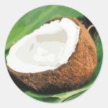 Cocos hawaianos frescos pegatina redonda