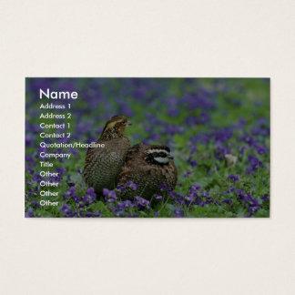 Codornices septentrionales tarjeta de visita