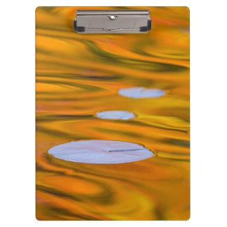 Cojín de lirio en el agua anaranjada, Canadá
