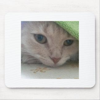 Cojín de ratón con el gatito alfombrilla de ratón