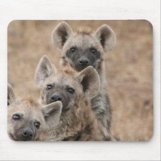 Cojín de ratón de los Hyenas Alfombrilla De Ratón