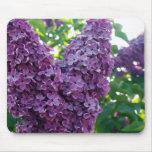 Cojín de ratón púrpura de las lilas tapete de ratones