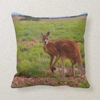 Cojín Decorativo Amortiguador rojo australiano del canguro