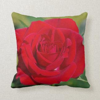 Cojín Decorativo Belleza del rosa rojo