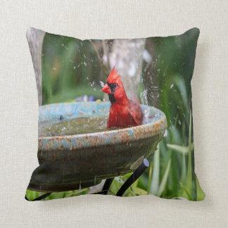 Cojín Decorativo cardenal rojo