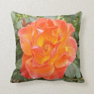 Cojín Decorativo Color de rosa