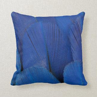 Cojín Decorativo Diseño azul de la pluma del Macaw del jacinto