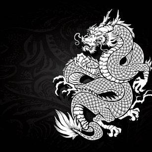 Decoración Blanco Y Negro Del Dragón Para El Hogar Y Mascotas