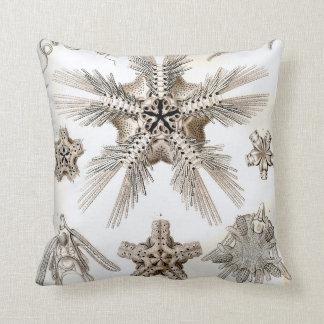 Cojín Decorativo Estrellas frágiles de Ernst Haeckel Ophiodea