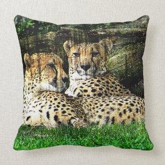 Cojín Decorativo Foto del efecto del Grunge de los guepardos