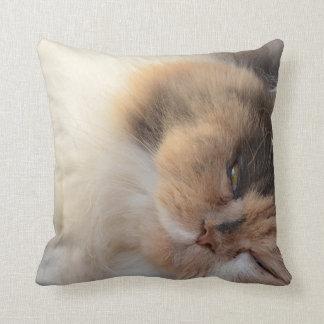 Cojín Decorativo Gato el dormir